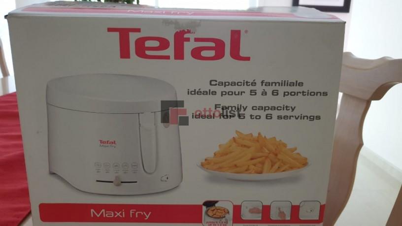 tefal-maxifry-big-0