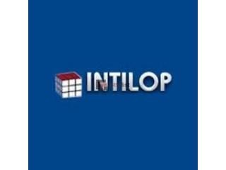 10G Low latency NIC