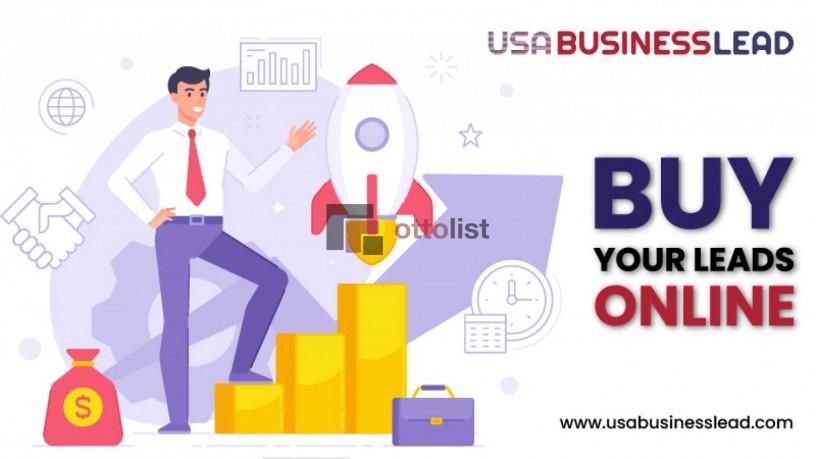buy-your-leads-online-usabusinesslead-big-0